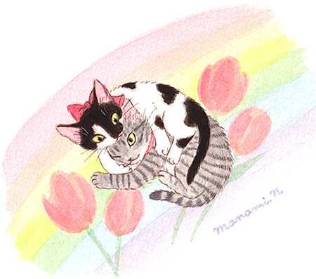 ribboncat210124d.jpg